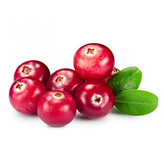 cranberries flavor image